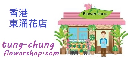 香港東涌花店 | Tung Chung Flower Shop